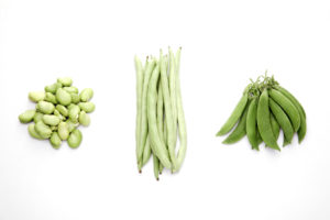 Lima Beans, Green Beans, Snap Peas